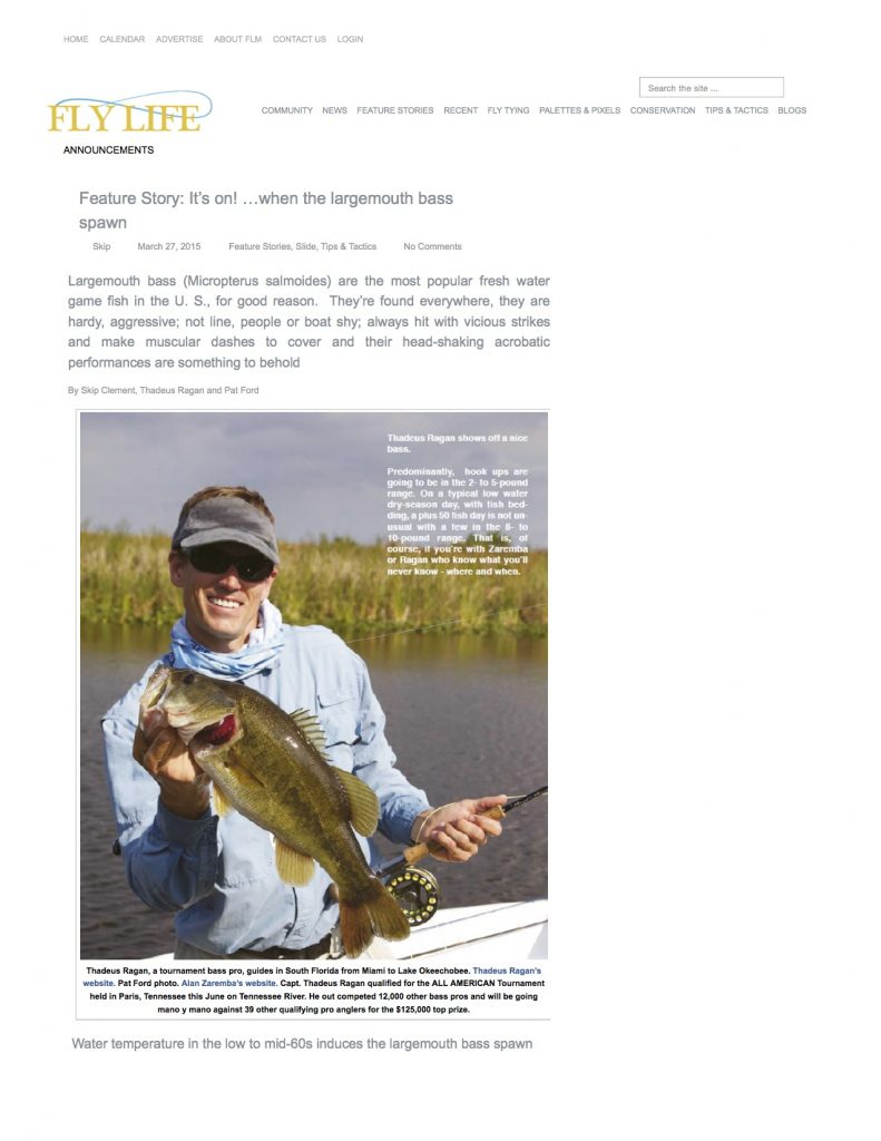 glades bassin south florida bass fishing tours